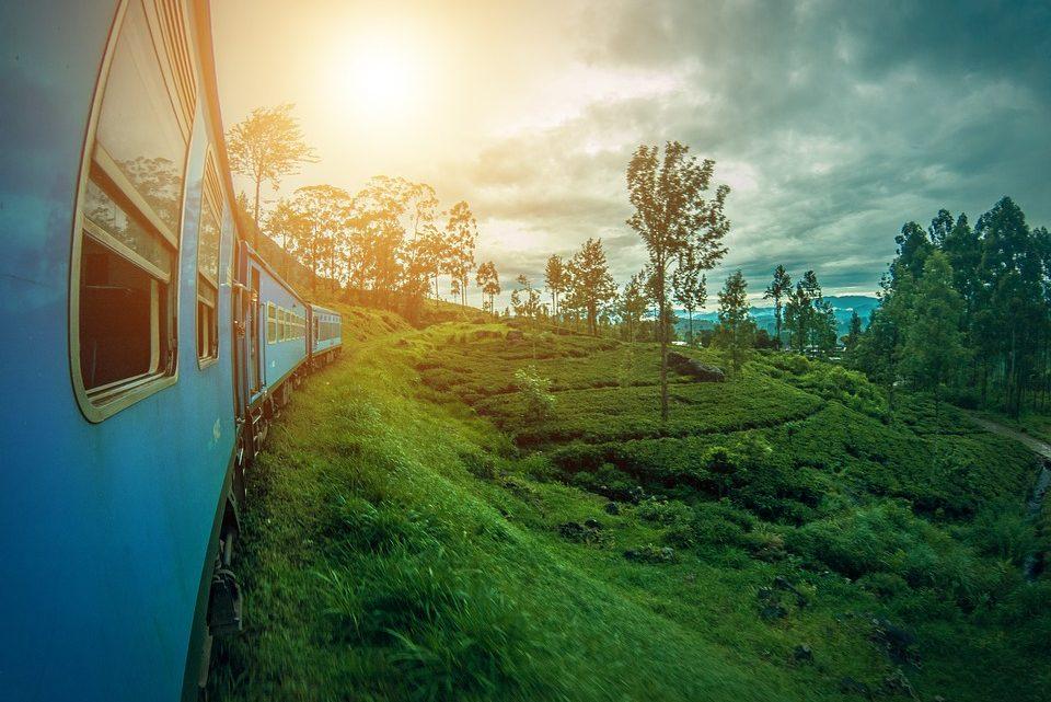 Top 3 des bonnes raisons de partir à deux au Sri Lanka